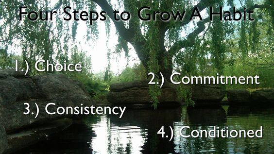 Habits are grow.    First they start as a choice, move to a commitment, become consistent and finally are conditioned into your life.     It all starts with a choice