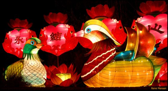 All sizes | China festival of lights | Flickr - Photo Sharing!