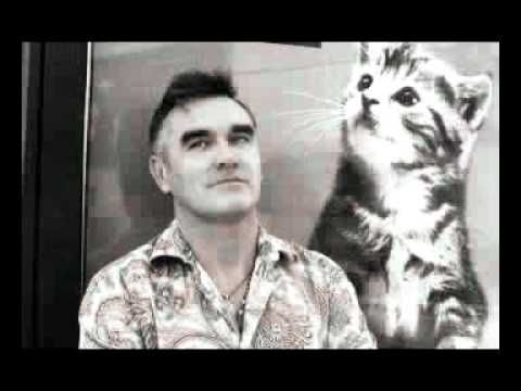 Morrissey - You say you don't love me ( Buzzcocks cover)