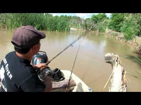 Fishing For Catfish