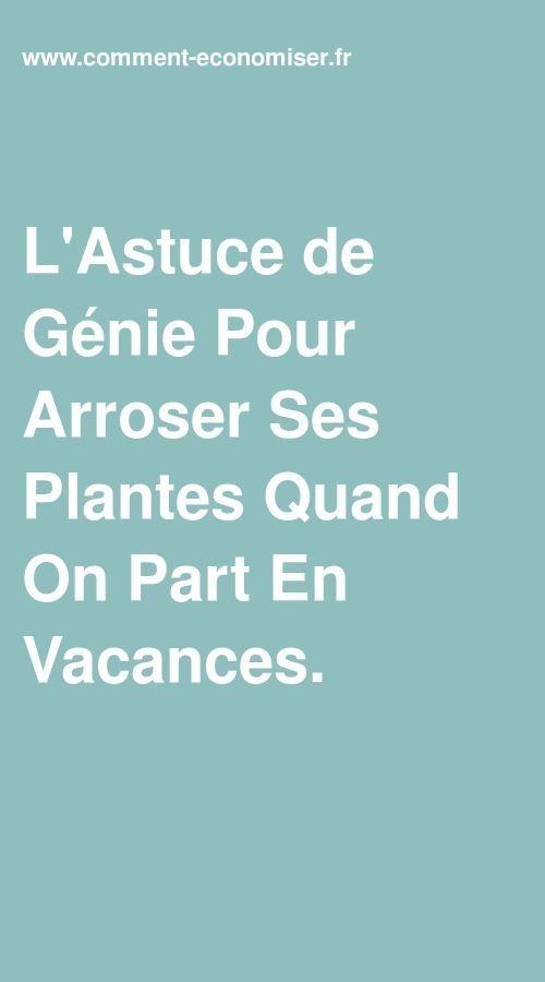 L Astuce De Genie Pour Arroser Ses Plantes Quand On Part En