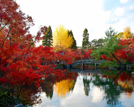 放生池 - 永観堂禅林寺 / Eikando Zenrin-ji Temple | Flickr - Photo Sharing!