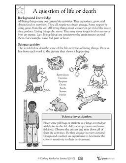 Printables Elementary Science Worksheets our 5 favorite prek math worksheets activities website and living non things worksheet