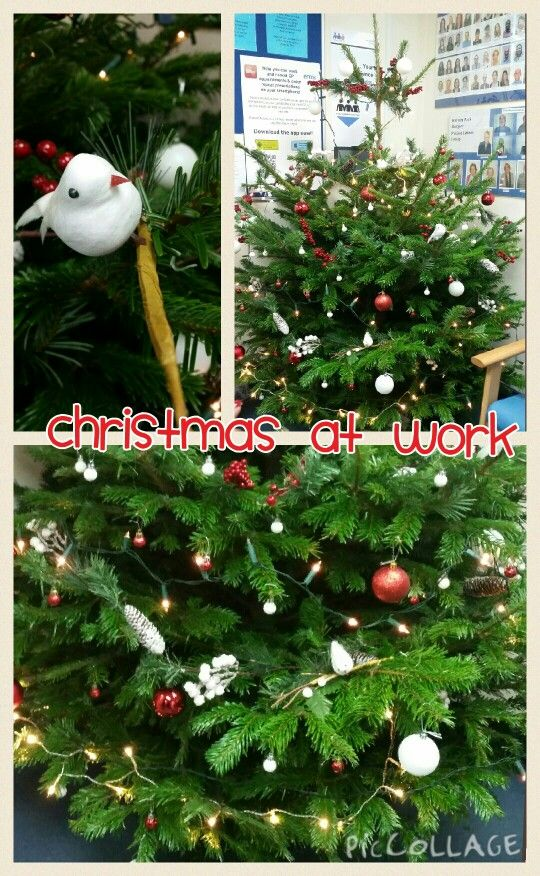 This year the christmas tree at work was dubbed the elegant tree after I've decorated it with just £10 (NHS budget) worth of decorations from 99p shop. I was told for years the tree decorations were tacky and cheap lol!