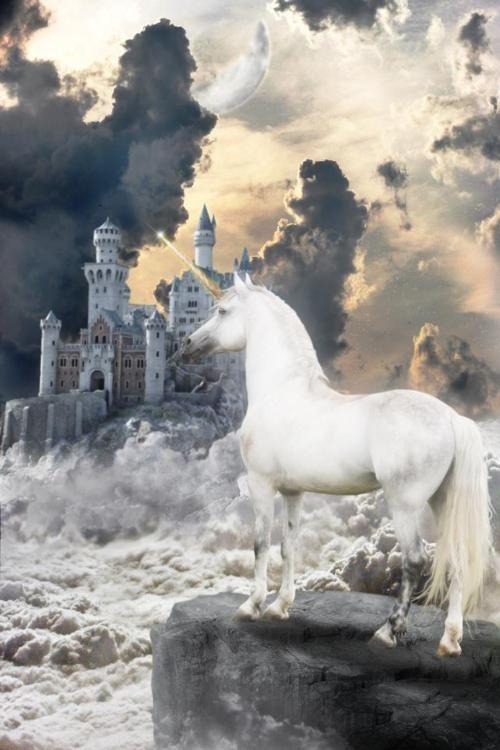 El unicornio Edbeb5f46a6abbbb17c69b8132aa56d8