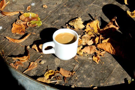 🔸 Coffee Time - Dordogne 🔸 Le déjeuner sur l'herbe à Saint-Léon-sur-Vézère.