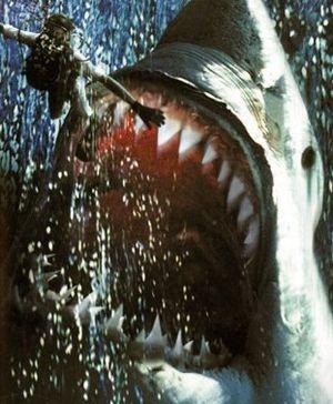 ダイバーを襲うメガロドン