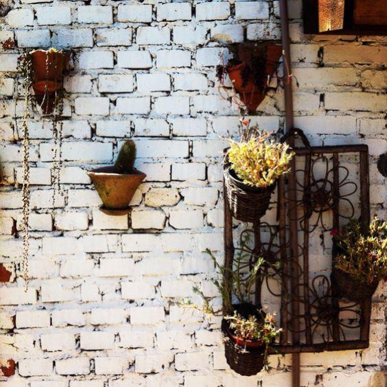 Ventania - Flores da Cunha - RS - Brasil