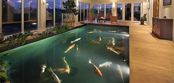 Indoor koi pond atrium ideas pinterest the o 39 jays for Koi pond swimming pool