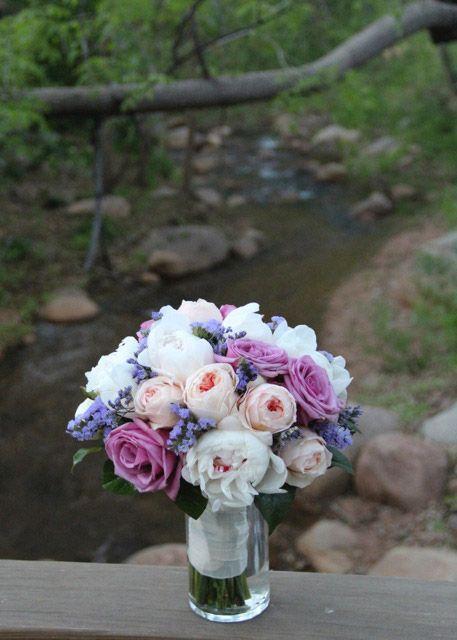Liz Ash - Ambience Florals