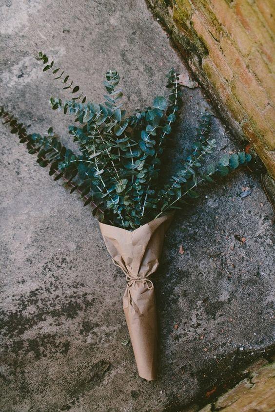 exPress-o: Eucalyptus Bouquet
