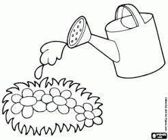 Resultado De Imagen De Dibujos Regando Plantas Paginas Para Colorear Imagenes Coloridas Plantillas Para Colorear