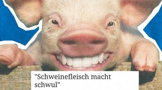 10 Gründe, warum du dir diese Schweinerei nicht gefallen lässt - #CSU http://www.berliner-buzz.de/10-gruende-warum-du-dir-diese-schweinerei-nicht-gefallen-laesst/
