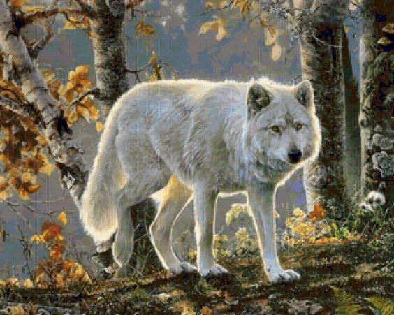 """Le régime broderie """"White Wolf"""" - Plans auteur «Darklady» - Point de Croix"""