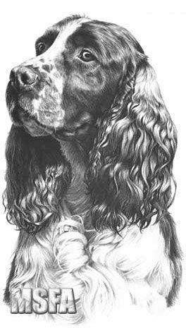 chiens uniques aux monde  Ede9b5af07081c69ff75fcda556c9238