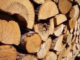 """Résultat de recherche d'images pour """"buches de bois"""""""