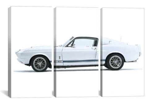 1967 Shelby Mustang GT 500 (3 Piece)