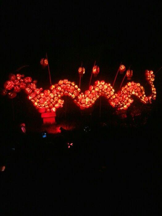 Chinese Dragon made from Jack o lanterns
