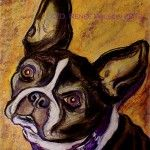 My Pawtrait pet portrait project was featured in an article on bterrier.com :D  Renee Wilson's Pet Portraits Benefitting Rescue Orgs | Boston Terrier Dogs