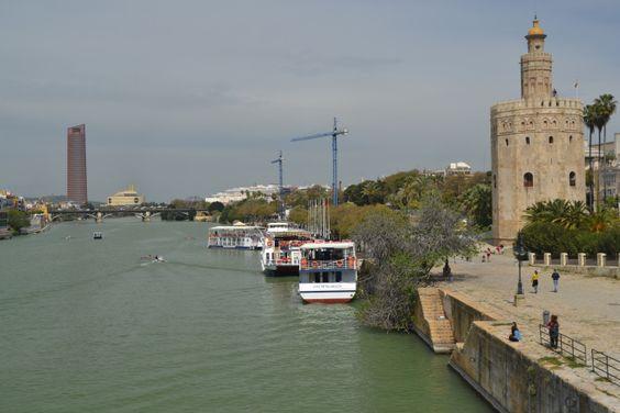 Vista desde el Puente de San Telmo