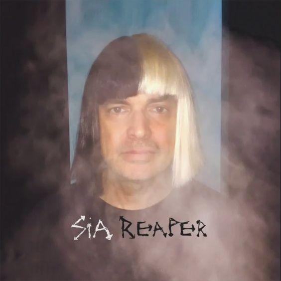 Sia – Reaper acapella
