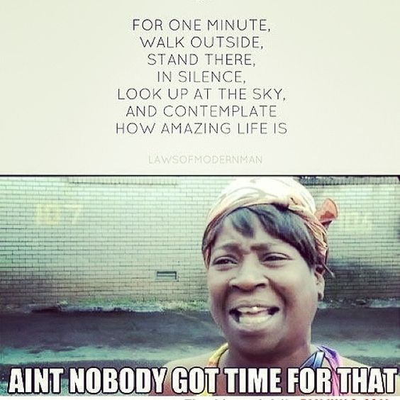 I could look at sweet brown memes all day.