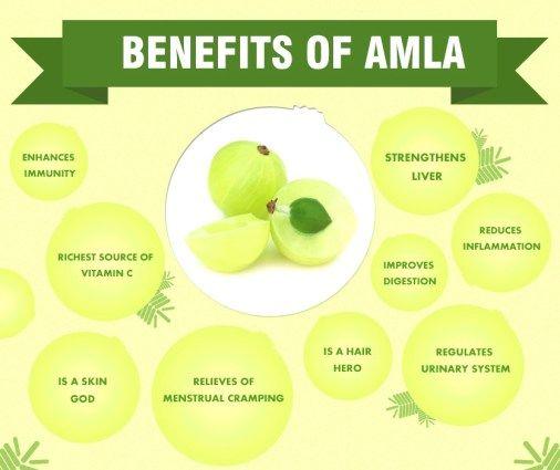Top 10 Amazing Benefits Of Amla The Indian Gooseberry Gooseberry Benefits Gooseberry Amla