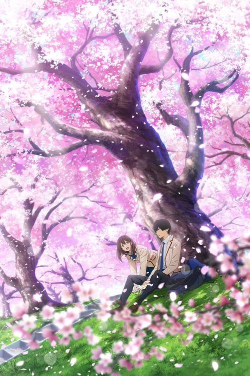 Regarder I Want To Eat Your Pancreas Complet Français Dubbed Téléchargement In Hd 720p Video Quality Anime Wallpaper Anime Wall Art Aesthetic Anime