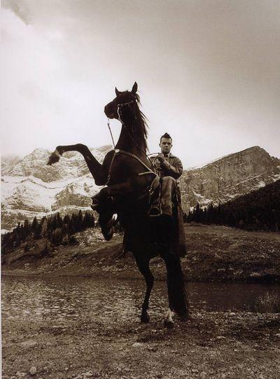 Robbie Williams Horse