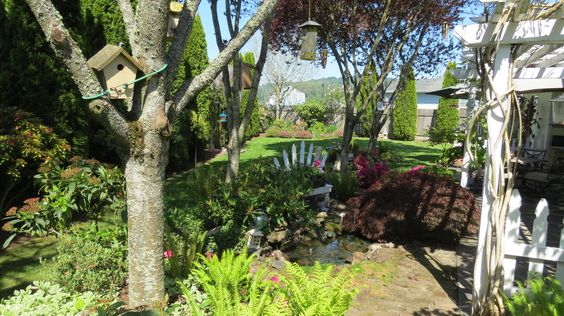 Fantastic back yard with Koi Pond, patio, loads of bird houses, and more! Plus frequent visits from local wild ducks!