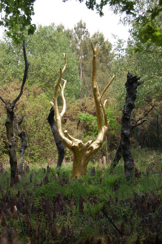 L'arbre d'Or, Forêt de Brocéliande, Ille et Vilaine