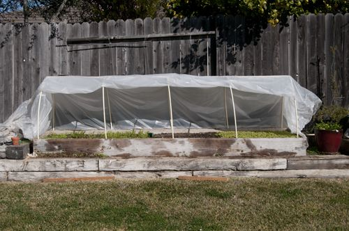 HOW TO:  opened hoop house over a raised bed garden
