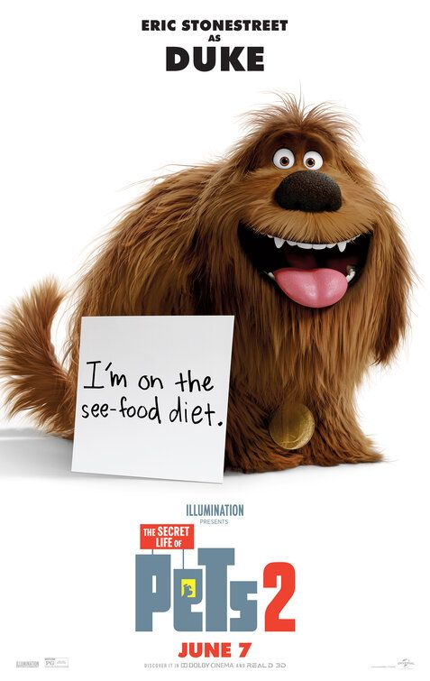 Click To View Extra Large Poster Image For The Secret Life Of Pets 2 Secret Life Of Pets Secret Life Pets