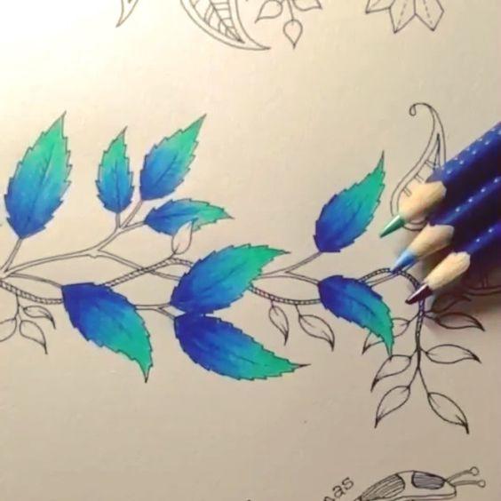 ⓑⓞⓐ ⓝⓞⓘⓣⓔ pessoal!! Sexta-feira é dia de #combinandocoresJSI amei muito a de hoje!!! AZUL ESCURO➕AZUL CLARO➕VERDE ÀGUA Lindo!!! Hoje recebi essa caixa e outros produtos da Faber Castell esses lápis são os da linha Art Grip Aquarelle. Shake It Off- Taylor Swift --------------------------------------------------- #⃣ Use #jardimsecretoinspire para que seu colorido seja compartilhado aqui no nosso perfil!! ➡️ Envie por Direct também as suas fotos!! #jardimsecretoinspire #jardimsecreto…