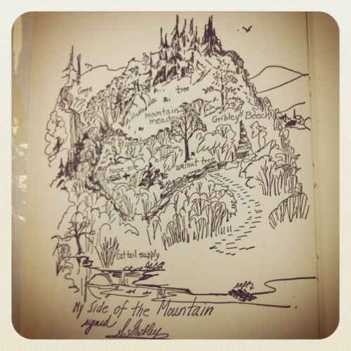 My Side of the Mountain by Jean Craighead George – My Side of the Mountain Worksheets