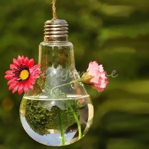 vase suspendu hanging verre fleur plante hydroponique. Black Bedroom Furniture Sets. Home Design Ideas