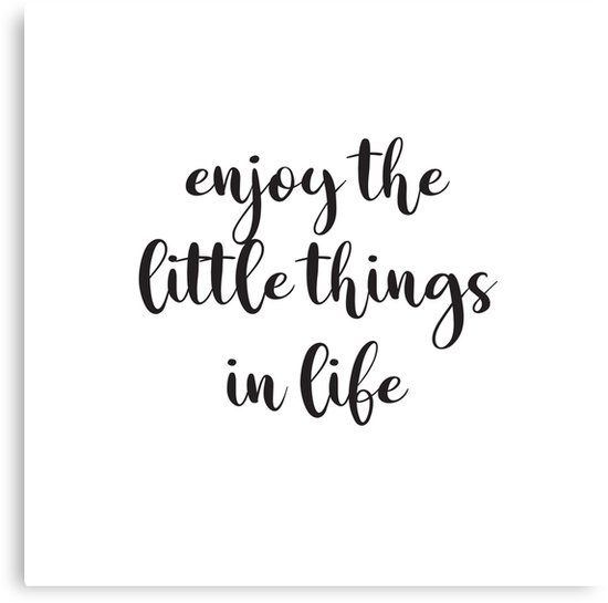 Quote Motto Words Decal Wall Art Sticker Picture Enjoy The Little Things