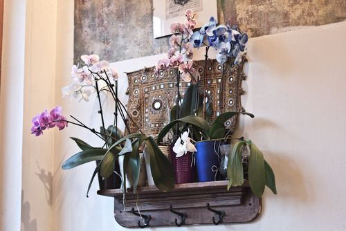 orchids on a shelf with a tapestry