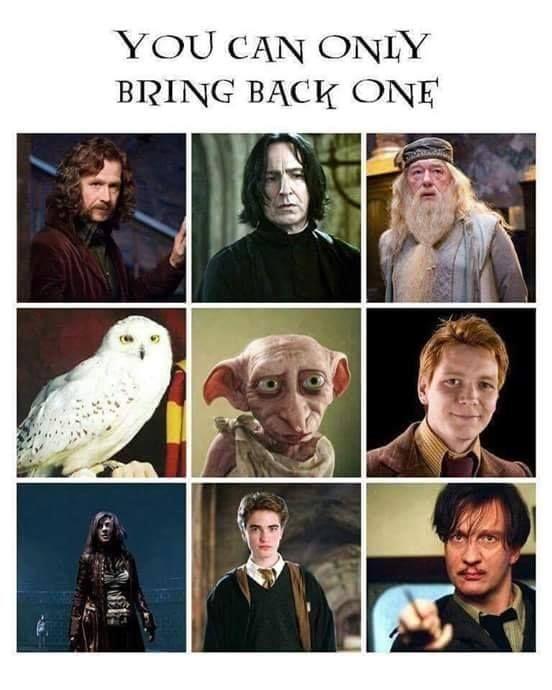 Pin Di K Bookworm Su Book Film Harry Potter Harry Potter Film Morte