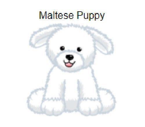Webkinz Maltese Puppy Code Only Email Maltese Puppy Maltese