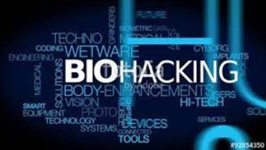 Transformate Biohakea Tu Interior Dieta De Eliminación Cuerpo Biología