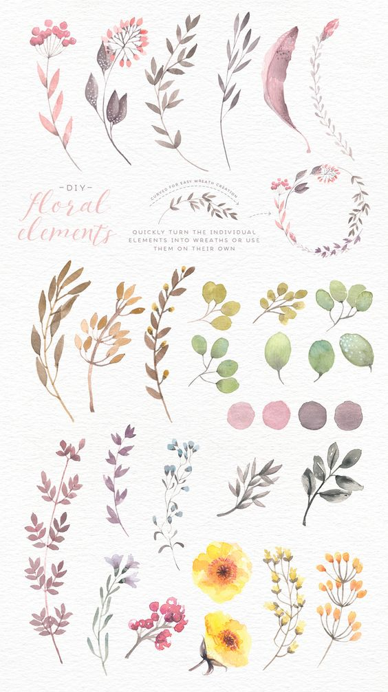 Watercolor floral edges+backgrounds by Lisa Glanz on Creative Market: