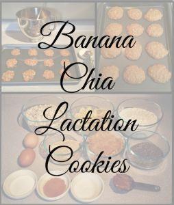 Healthier lactation cookies! Healthy Banana Chia Lactation Cookies