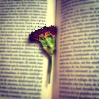 Flowery bookmark :D