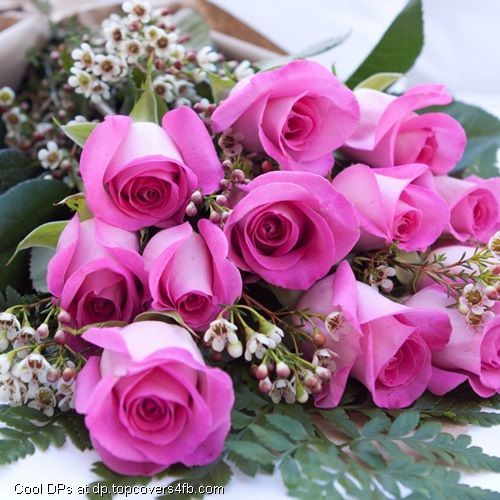 Pink Rose With Orchid Flower Display Picture Orchid Flower Flowers Pretty Flowers