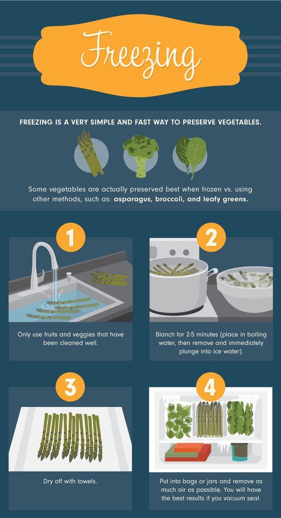 Conservação de alimentos Congelamento - Melhor comida métodos de conservação para esta temporada