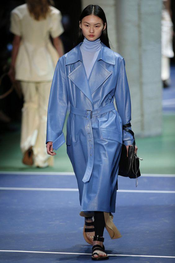 Céline   Ready-to-Wear - Autumn 2016   Look 37