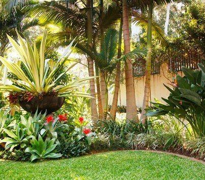 tropical backyard pots plants trees tropical gardens tropical