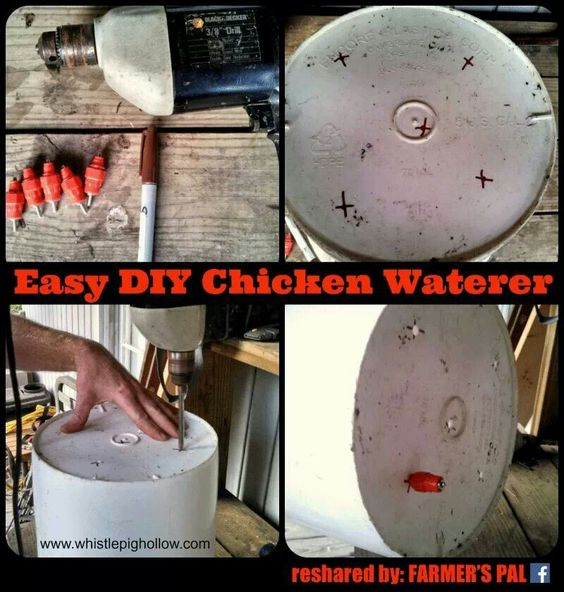 Chicken waterer diy