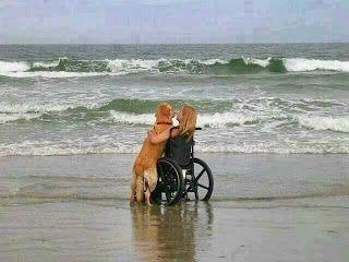 girl vs dog: Unconditional Love, Best Friends, Golden Retrievers, True Love, Service Dogs, The Beach, Dog S, Bestfriend, Man